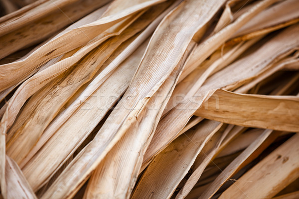 Dry reed - the material for the production of souvenirs. Stock photo © pzaxe