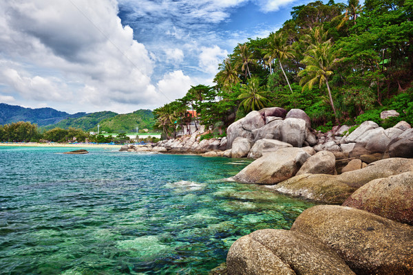 Egzotik tropikal okyanus kıyı Tayland phuket Stok fotoğraf © pzaxe