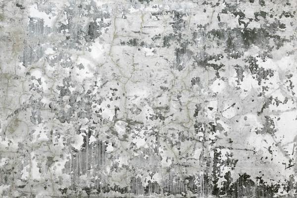 Gris pared grietas concretas cubierto Foto stock © pzaxe