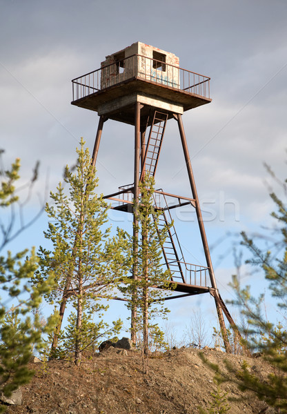 The thrown watchtower in a wood Stock photo © pzaxe