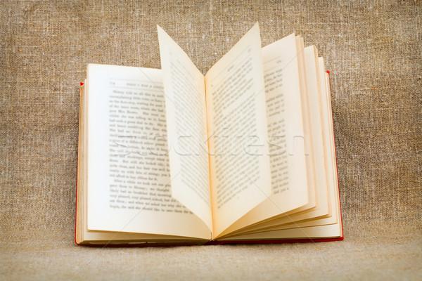 Abrir velho livro lona livro folha educação Foto stock © pzaxe