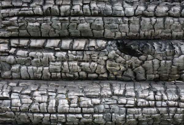 Surface of the charred wood Stock photo © pzaxe