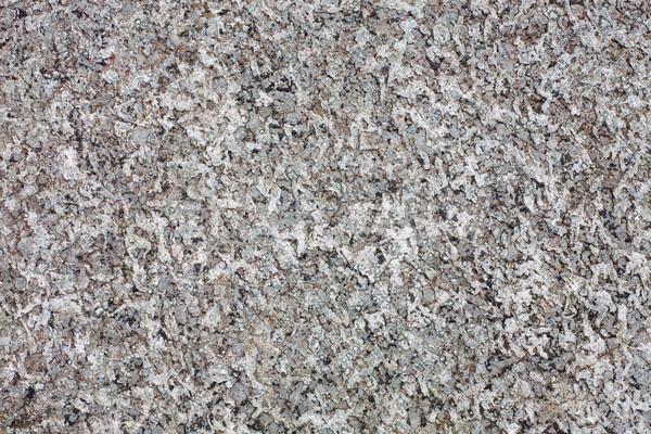 грубо поверхность рок серый стены природы Сток-фото © pzaxe