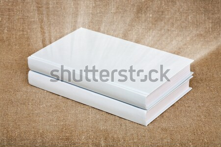Two books in a white cover on canvas Stock photo © pzaxe