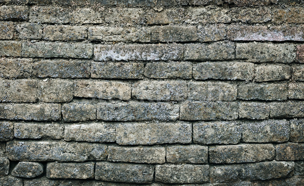 Old moldy brick wall background  Stock photo © pzaxe