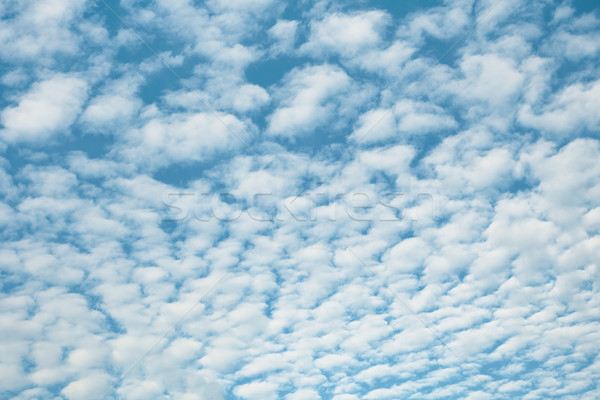 White high heaped clouds background Stock photo © pzaxe