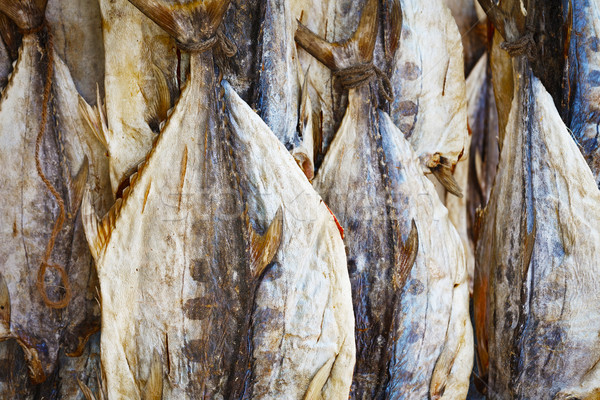 сушат тунца рынке Шри Ланка продовольствие Сток-фото © pzaxe