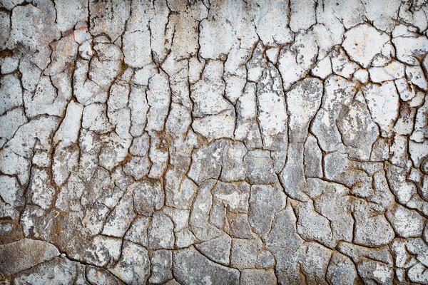 Cracks Stock photo © pzaxe