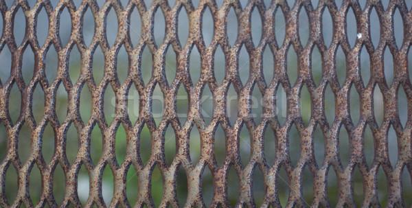 Metal old rusty lattice Stock photo © pzaxe