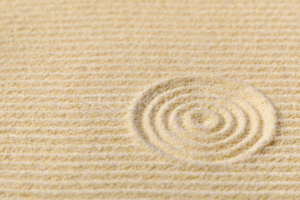 Abstract composition - Japanese zen garden with circles Stock photo © pzaxe