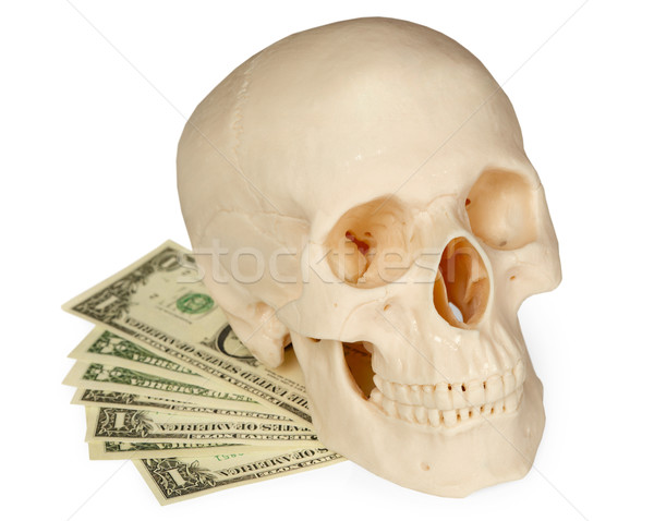 Skull lying on a pack of money isolated on white Stock photo © pzaxe