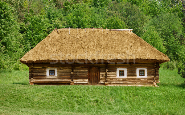Old ukrainian rural house Stock photo © pzaxe