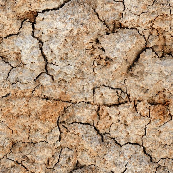 Végtelenített természetes textúra repedt agyag föld Stock fotó © pzaxe