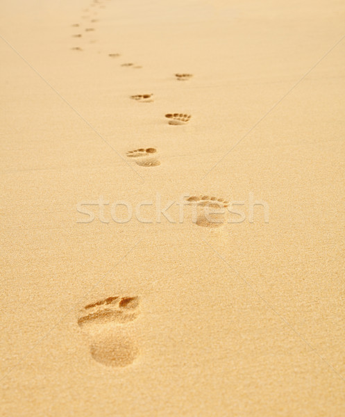 Ayak izleri plaj doğa arka plan yaz Stok fotoğraf © pzaxe