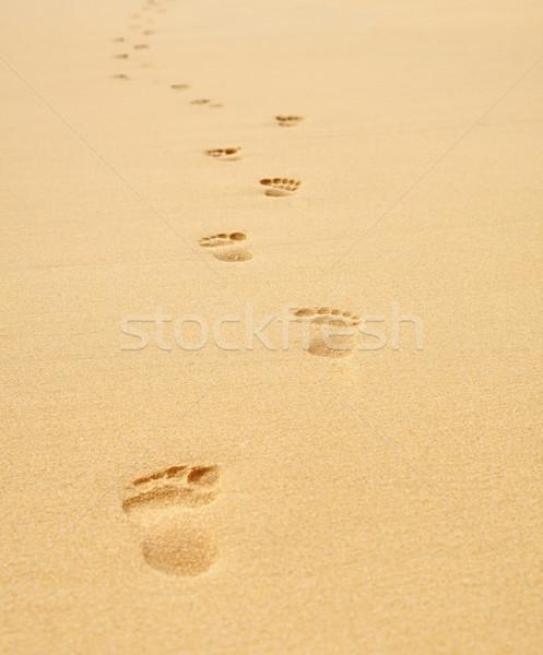 следов пляж природы фон лет Сток-фото © pzaxe