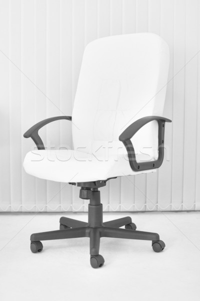 Big white office leather armchair for chief Stock photo © pzaxe