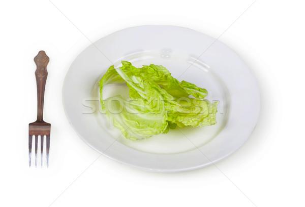 Groene salade plaat geïsoleerd witte restaurant Stockfoto © pzaxe