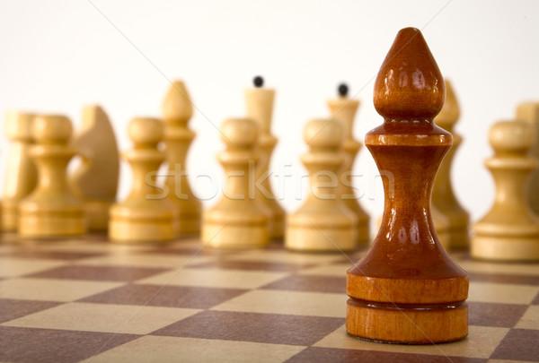 Chess bishop Stock photo © pzaxe