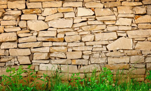 известняк стены трава ногу природы дизайна Сток-фото © pzaxe