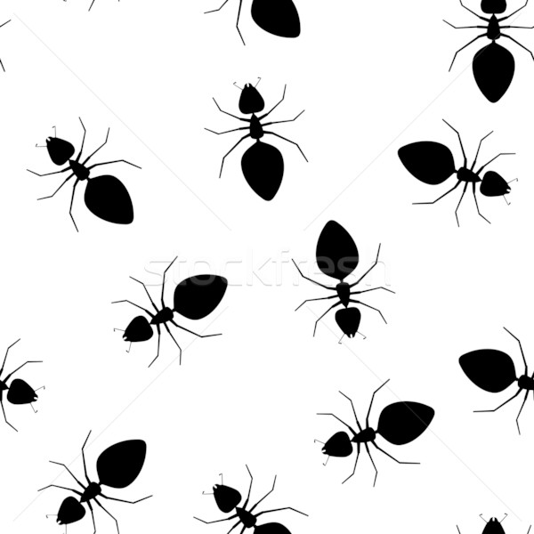 Seamless vector texture - ants pests Stock photo © pzaxe
