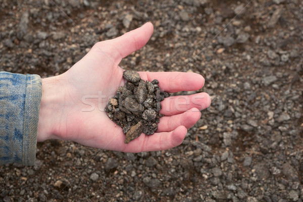 Hand of the farmer holding handful of infertile earth Stock photo © pzaxe