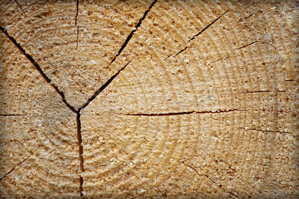 Rough raw wood with cracks Stock photo © pzaxe