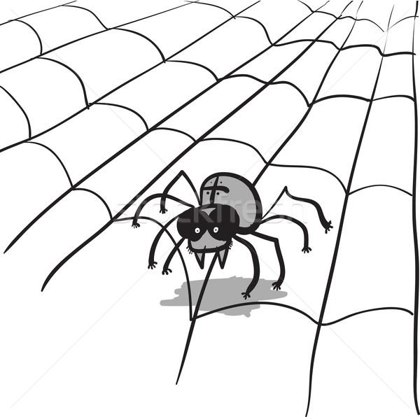 Simple monochrome vector image - spider in web Stock photo © pzaxe