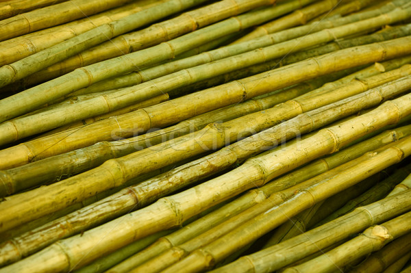 Bamboo trunks prepared for building Stock photo © pzaxe