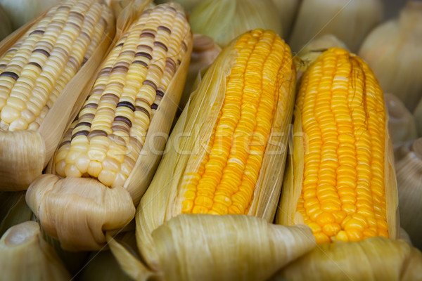 Boiled corn at a street vendor's stand Stock photo © pzaxe