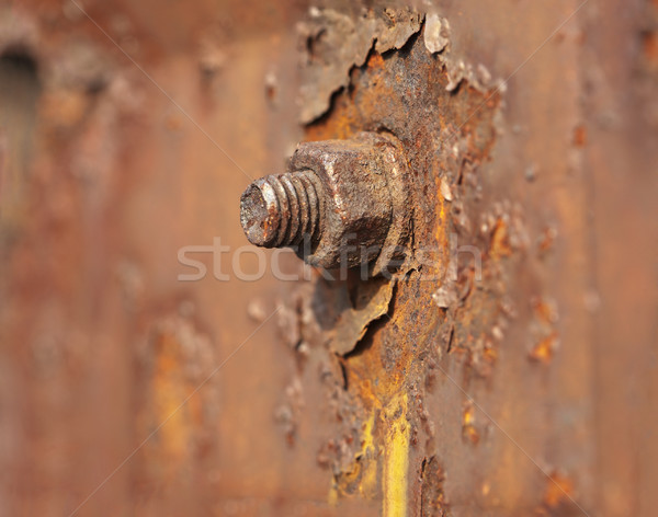 Metal nut rusted Stock photo © pzaxe