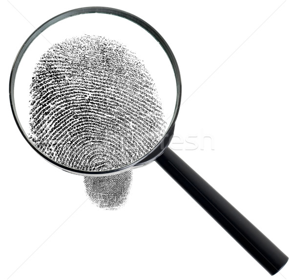 Magnifier and fingerprint isolated on white background Stock photo © pzaxe