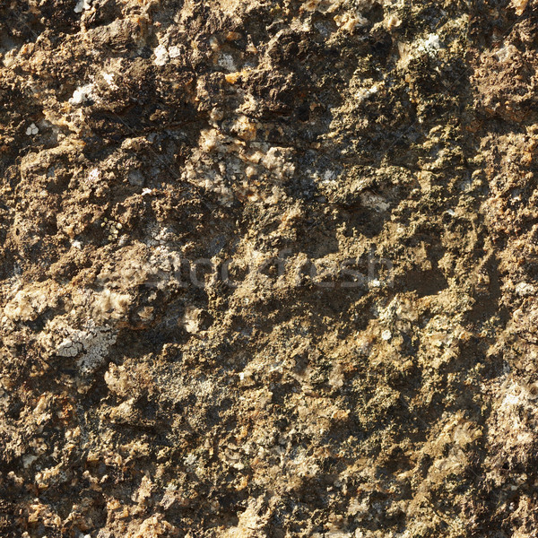 Stone seamless natural texture Stock photo © pzaxe