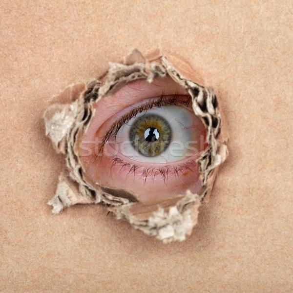 Spy eye in hole Stock photo © pzaxe