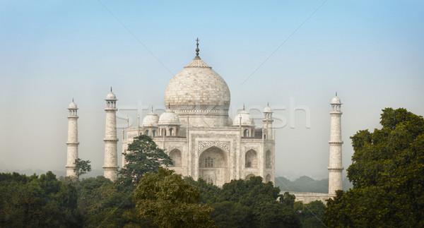 India Taj Mahal híres mauzóleum fehér márvány Stock fotó © pzaxe