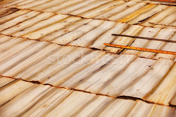 自然 素材 ストリップ カット 太陽 ストックフォト © pzaxe