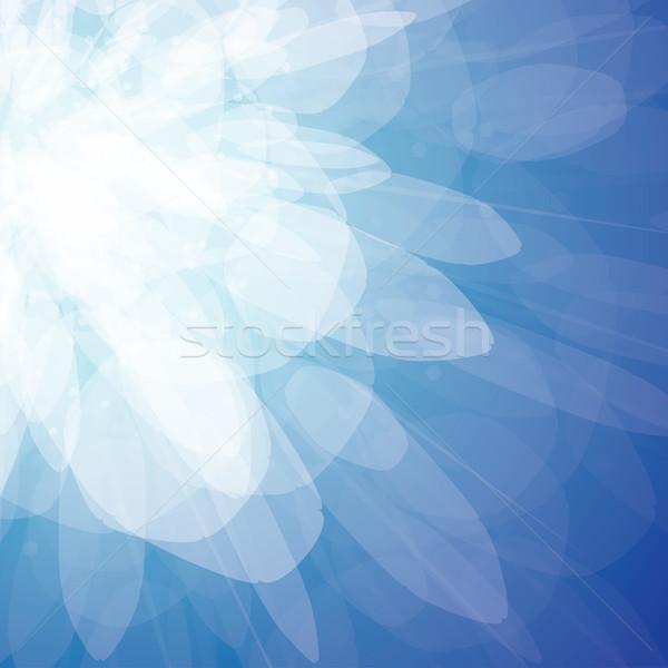 Wektora streszczenie niebieski placu kwiat Zdjęcia stock © pzaxe