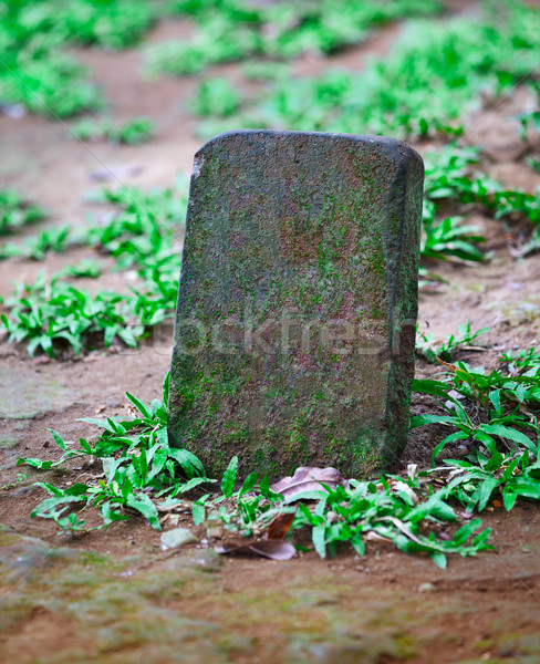 Tombstone for the pet grave Stock photo © pzaxe