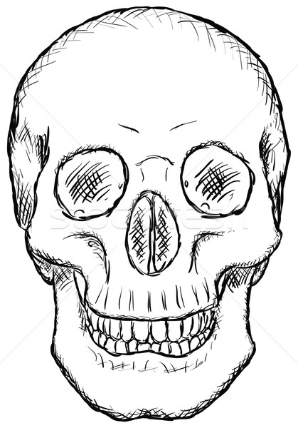 Skull - rough vector drawing Stock photo © pzaxe
