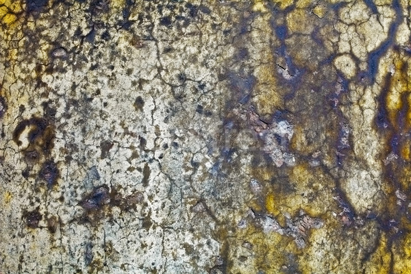 Moldy wall of old building - background Stock photo © pzaxe