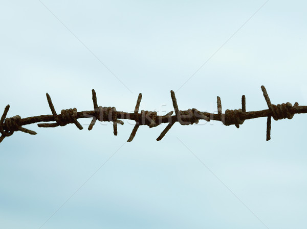 Ancient rusty barbed wire against sky Stock photo © pzaxe