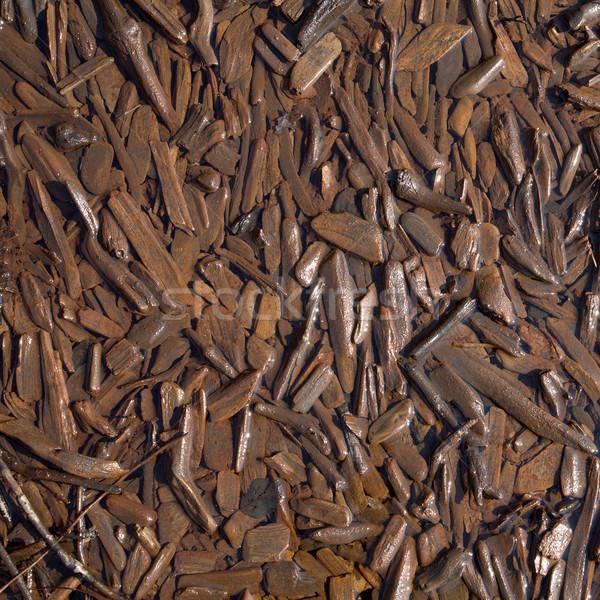 Rot chips kust meer patroon water Stockfoto © pzaxe