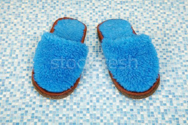 Pair of soft blue slippers Stock photo © pzaxe