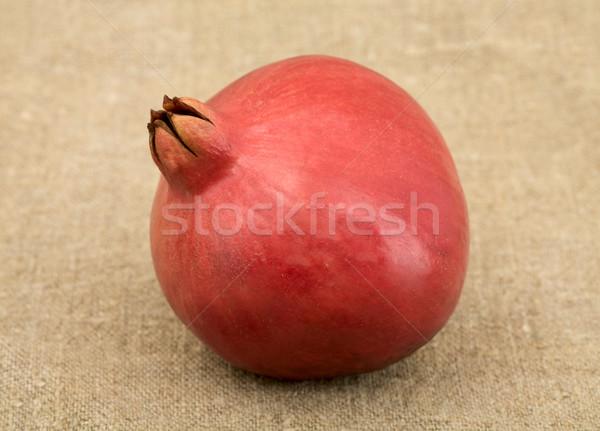 Pomegranate Stock photo © pzaxe