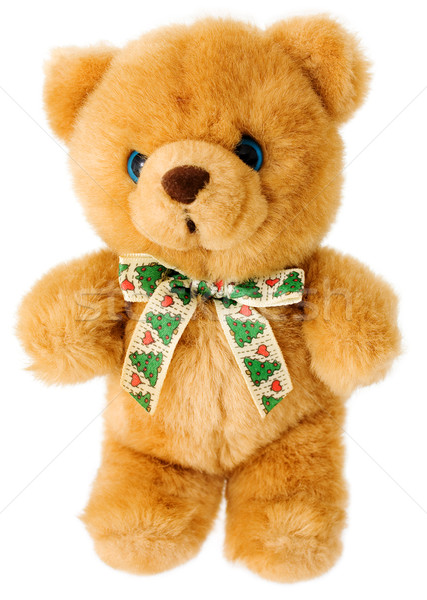 Brown bear teddy  Stock photo © pzaxe