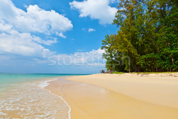 Daytime landscape with a beautiful beach and tropical sea Stock photo © pzaxe