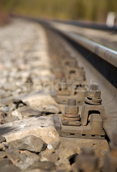 Railroad tracks Stock photo © pzaxe
