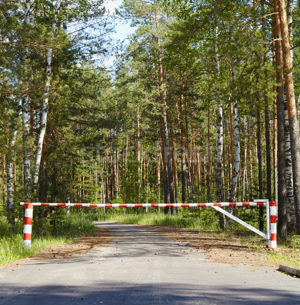 Barrier blocking road in woods Stock photo © pzaxe
