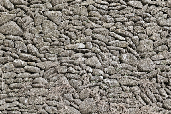 Old gray stone wall background Stock photo © pzaxe