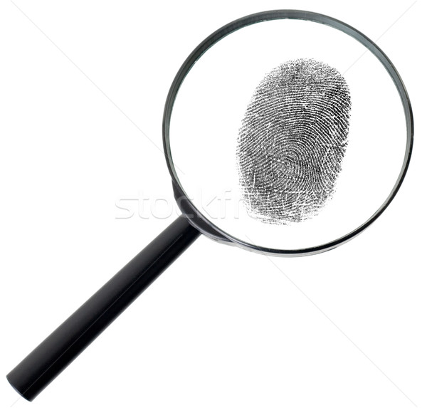 Magnifier and fingerprint isolated on white Stock photo © pzaxe