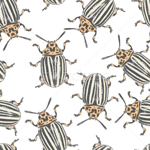Colorado vector textuur naadloos eps8 kunst Stockfoto © pzaxe